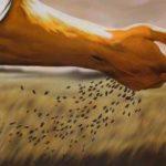 Sagesse et Harmonies Téléchargement Digital - on-recolte-ce-que-lon-seme
